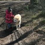 Dzeni Kate nesatika, tomēr atrada kociņus, ar kuru palīdzību pati var radīt tuk tuk tuk skaņas. Protams, Ledum par to ir jāpastāsta.