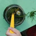 Kad visu krāsu ūdeņi sajaukti kopā un pievienoti zaļumi, Kates īpašā zupa ir gatava!